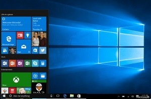 Windows10D